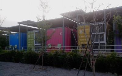 Surat thani : dodo en conteneurs