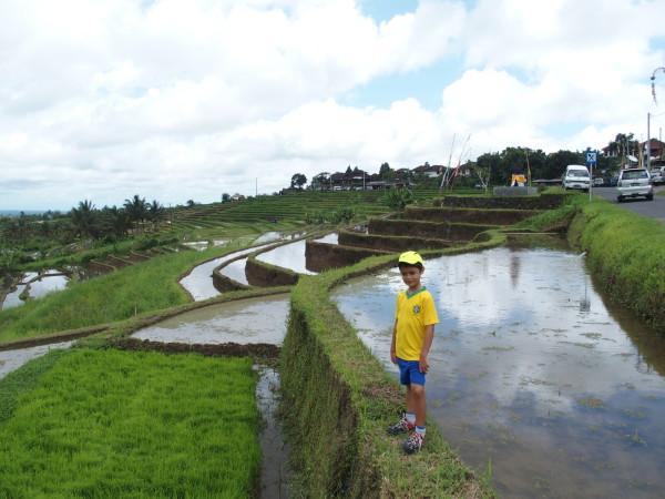 Anton dans les rizières de Jatiluwih - Bali